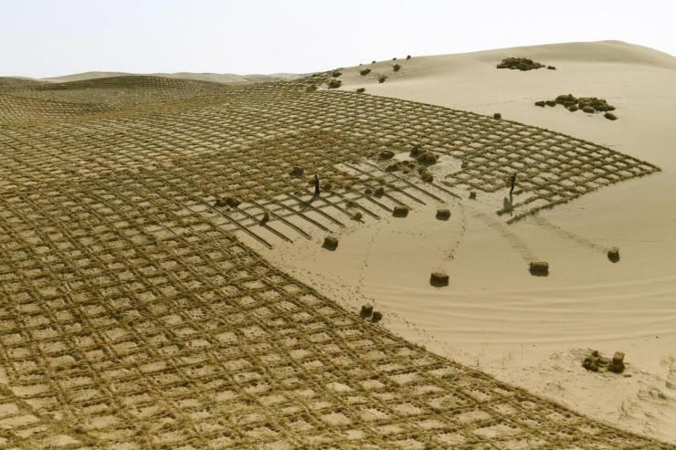 Cina, barriera ecologica in costruzione per prevenire la desertificazione